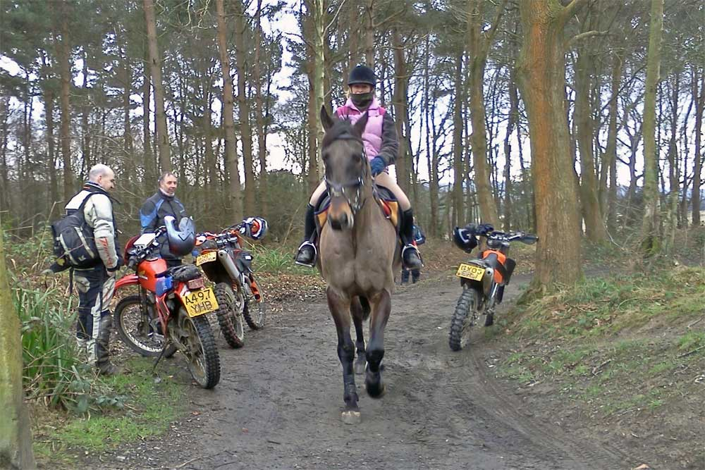 Sharing-the-trail-01