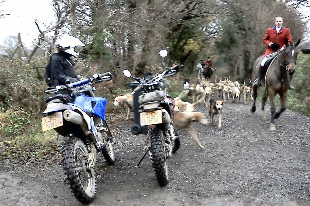 Sharing-the-trail-02