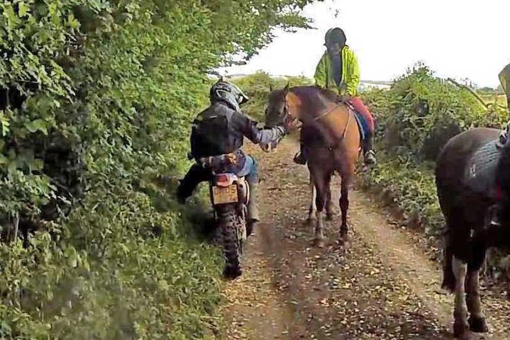 Sharing-the-trail-03