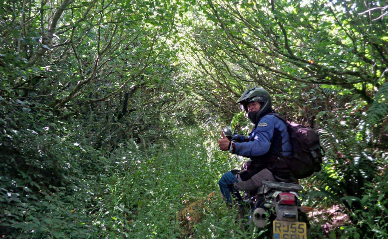 Byway-Tour-Paul-Nicholas-Blezard—Overgrown-Cornish-Lane